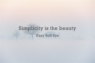 Simplicity is the beauty - Easy Soft Sys