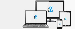 Responsive Web Designs by Easy Soft Sys