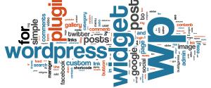 Wordpress Plugin Theme